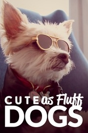 Cute as Fluff - S01:E01 - Dogs