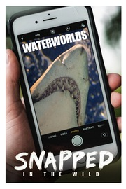 Snapped - S01:E05 - Water Worlds