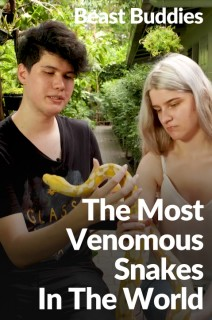Beast Buddies - S01:E19 - The Most Venomous Snakes in the World