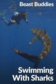 Beast Buddies - S01:E20 - Swimming with Sharks