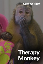 Cute as Fluff - S01:E07 - Therapy Monkey