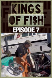 Kings of Fish - S01:E07 - Oh, Ship!