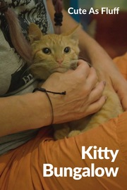 Cute as Fluff - S01:E06 - Kitty Bungalow