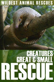 Creatures Great and Small Rescue - S01:E01 - Great and Small
